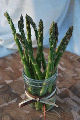 Isn't this the most beautiful asparagus you've ever seen? (I'm so proud--my husband grew it!)