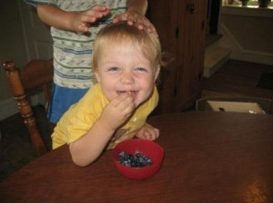 Blueberries, sugar plums, and peaches as well as many other fresh fruits available in our farm market. (Sorry that cute little boy is not for sale!)