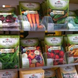 Garden Center Seeds