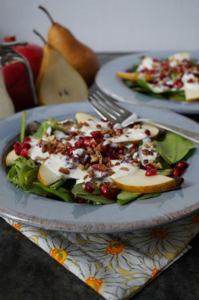 600_2_Pomegranate Pear Salad With Goat Cheese DressingV