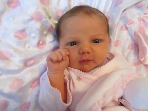 Baby Weavers1