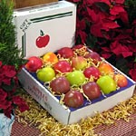 fruitbaskets_16-Pack-Apples