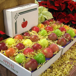 32 Pack Apples