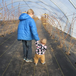 our oldest helping our youngest take some first steps in teh raspberry tunnel