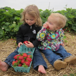 Talia and Kayla with strawberries