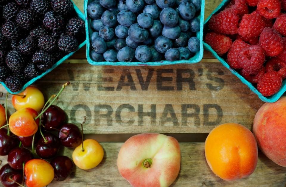 Berries in Market