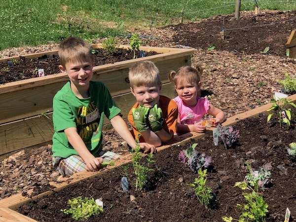 Planting at Orchard Explorers