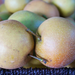 Asian-Pears