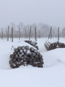 Snow at Weaver's Orchard
