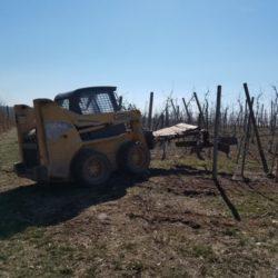 Orchard winter work