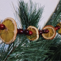 Dried fruit ornaments hanging on garland