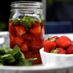 StrawberryShrub2